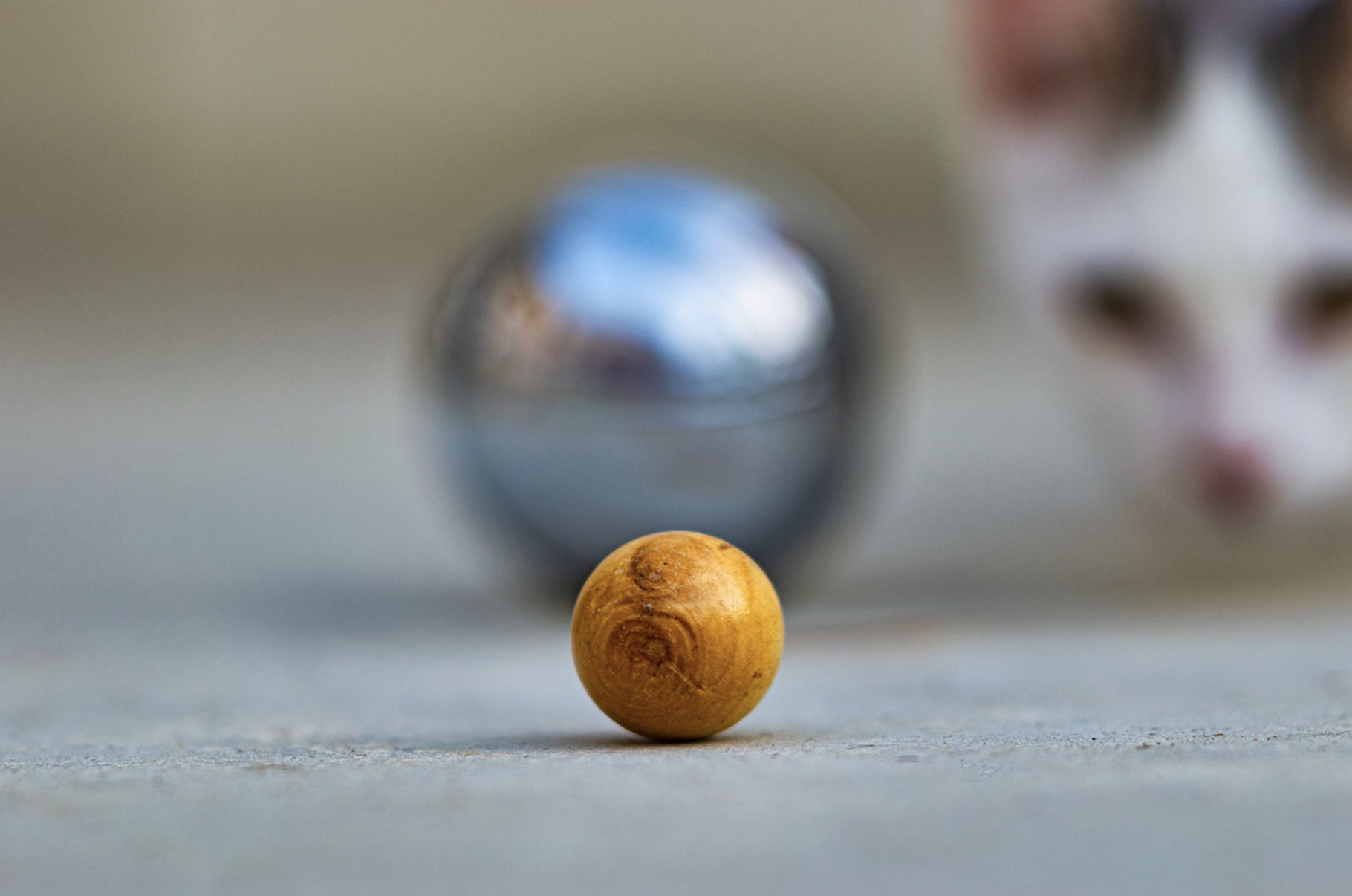 la boule de petanque