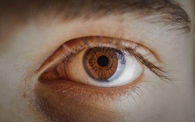 Toutes les lentilles s'adapte-t-elles à tout le monde ?