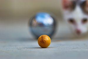 choisir votre boule de pétanque -2